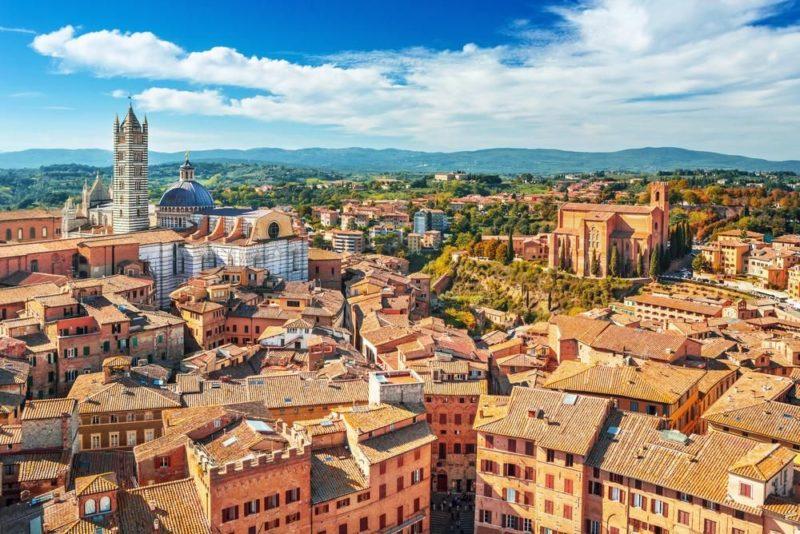 направления обучения в Италии